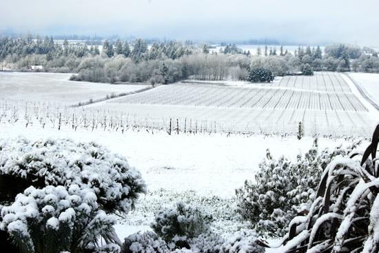 Jan_snow_at_aa_kent_f_at_aa_029